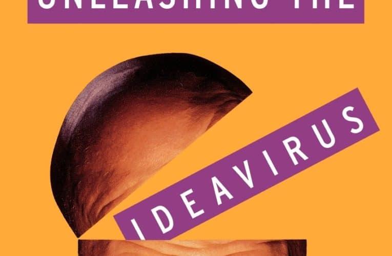 Seth Godin rightfully spreads ideavirus … again