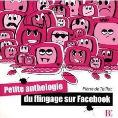 Facebook: anthologie d'un phénomène collaboratif