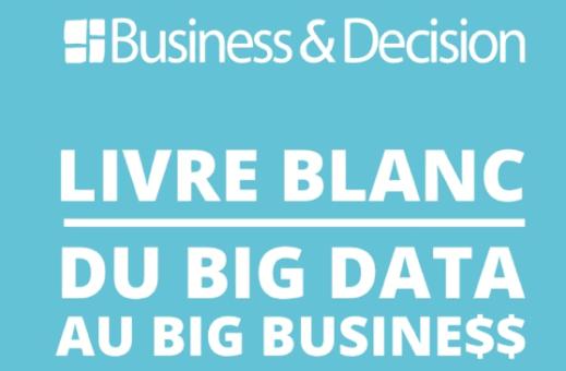 Livre blanc du Big Data au Big Business $$