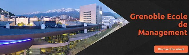Grenoble - Digital Business Strategy - Social Business