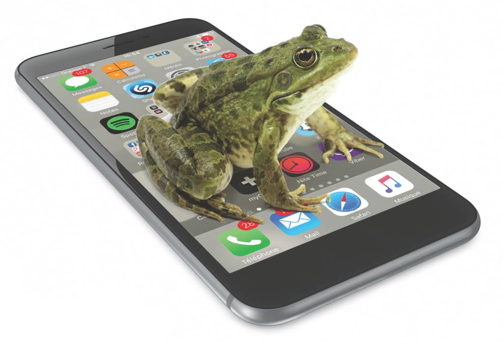 2015-12-08 Couv le-marketing-de la grenouille_Page_1 - copie