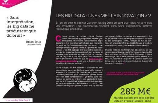 Livre Blanc des Big Data : comment réussir son projet ?