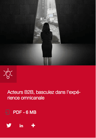 Marketing B2B - Capgemini - journal of marketing revolution