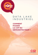 Le Data Lake expliqué à mon marketeur : pourquoi s'y intéresser