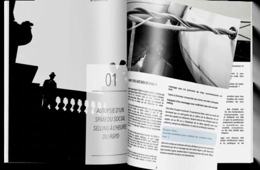 Le livre blanc en B2B