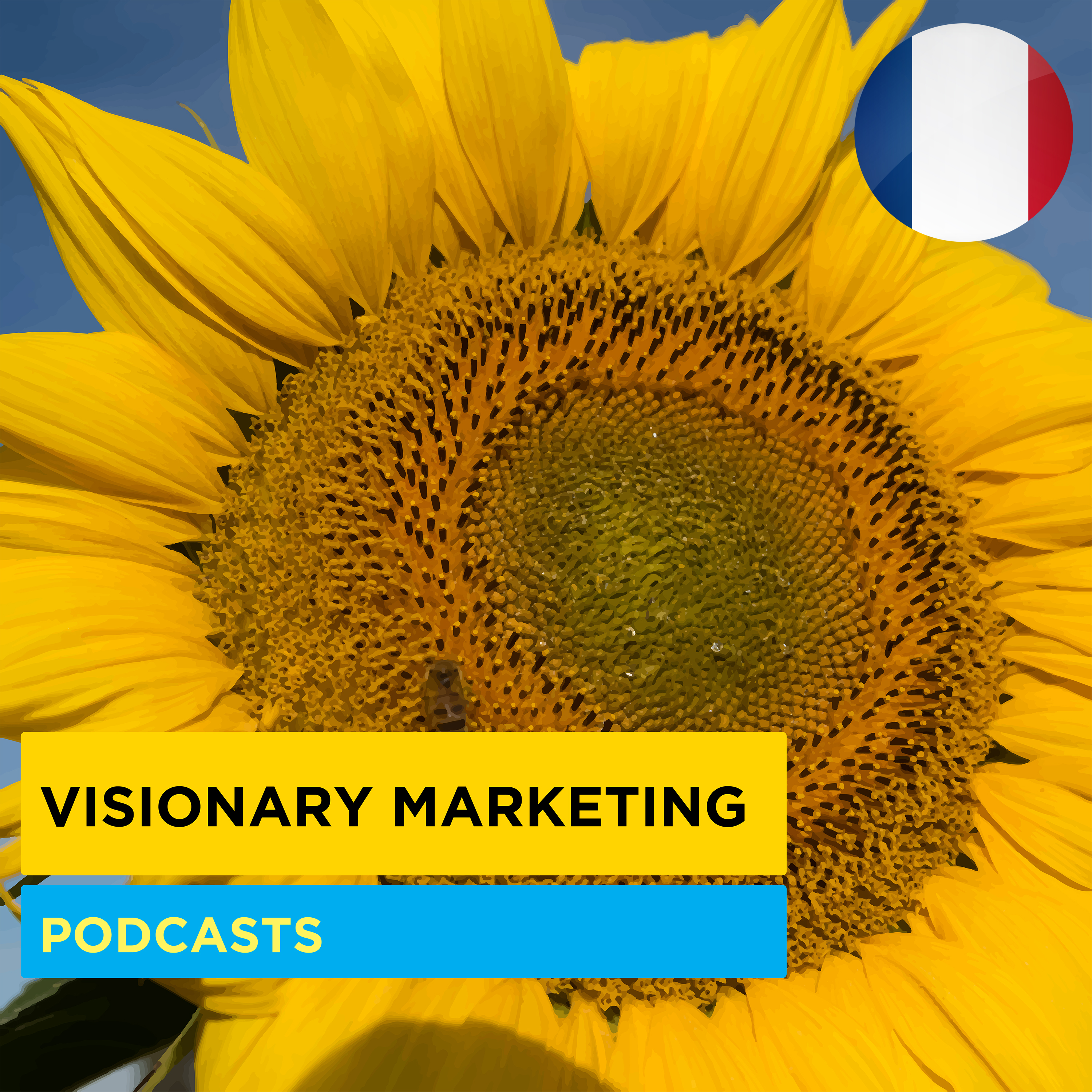 Les Podcasts de Visionary Marketing